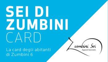 zumbinicard-001